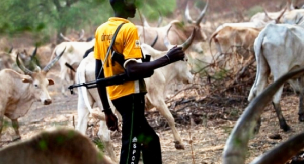 Five Killed in Fresh Herdsmen Attacks in Plateau