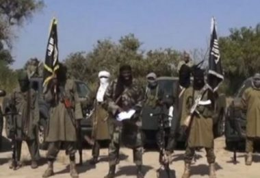 DAPCHI: We are not terrorists, Boko Haram tells residents