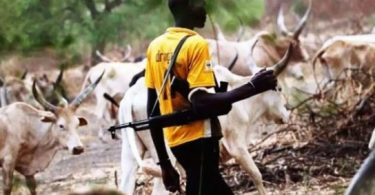 Ekiti PDP accuses APC of supporting herdsmen killings in Ekiti