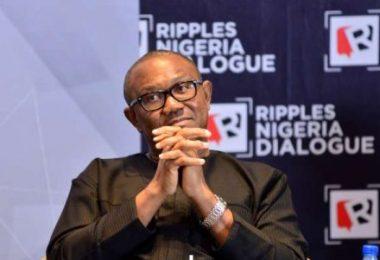 RIPPLES NIGERIA DIALOGUE: I did not say Nigerians have lost faith in Buhari Govt —Ex-Gov Obi