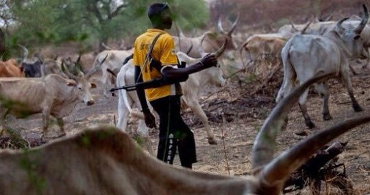Dead In Fresh Attack By Herdsmen In Kogi State