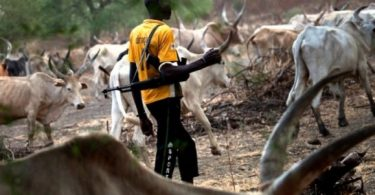BENUE: Fresh attack by camouflage-wearing herdsmen leaves 10 dead