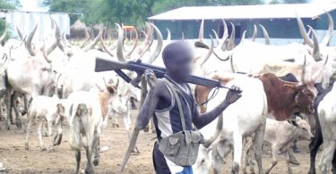 Miyetti Allah blames governors for herdsmen-related killings
