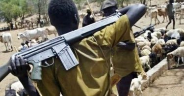 Herdsmen attack Plateau again, kill pastor, others