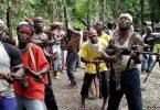 KADUNA: Bandits strike Birnin Gwari again, kill 10