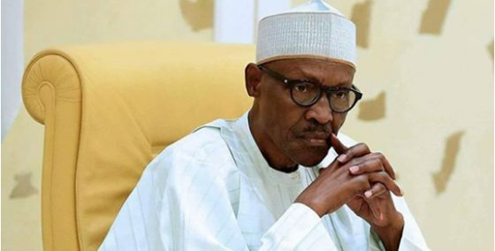 Image result for PDP slams Buhari over 'Nigerians are free to go' comment