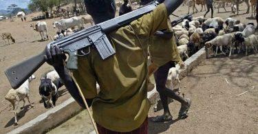 Suspected herdsmen unleash terror in Plateau, kill 18