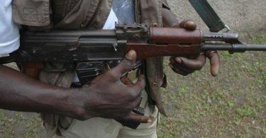 Assassins gun down Zamfara monarch