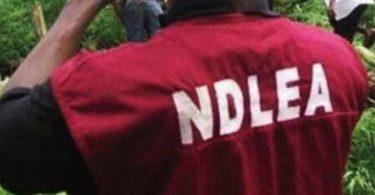 NDLEA operative's gun down 22-yr-old woman during raid
