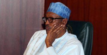 ADELEKE: CUPP taunts Buhari, asks him to provide his WAEC certificate