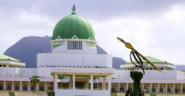 N'Assembly concludes work on fourth version of electoral amendment bill