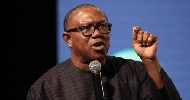 Drop Peter Obi or you lose, northern youth group tells Atiku