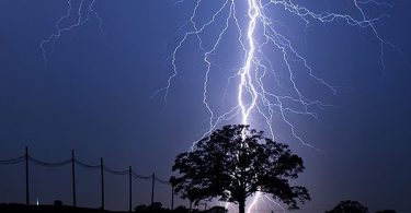 Pandemonium in Ondo community as timber contractor is struck dead by thunder