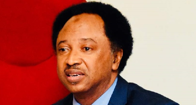 Shehu Sani says Buhari's govt is deceitful about restructuring