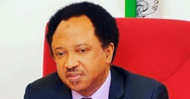 Sen Shehu Sani refuses to participate in APC senatorial primaries