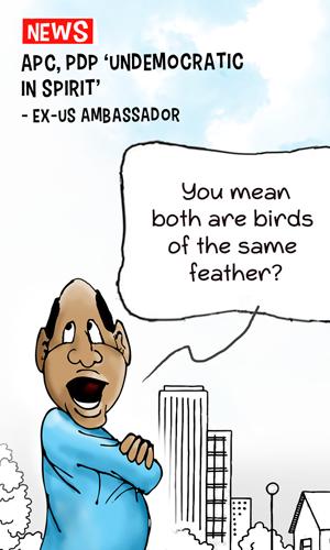 OGBENI APC, PDP 'undemocratic - Ex-US Ambassador