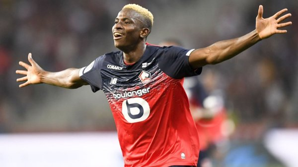 Following superb first season, Osimhen voted Lille player of the ...