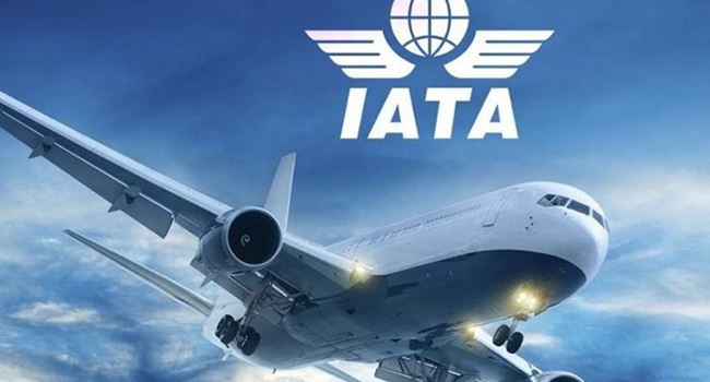 Nigeria's economy may lose N238.6bn revenue, 91,380 jobs as shutdown hits aviation industry – IATA
